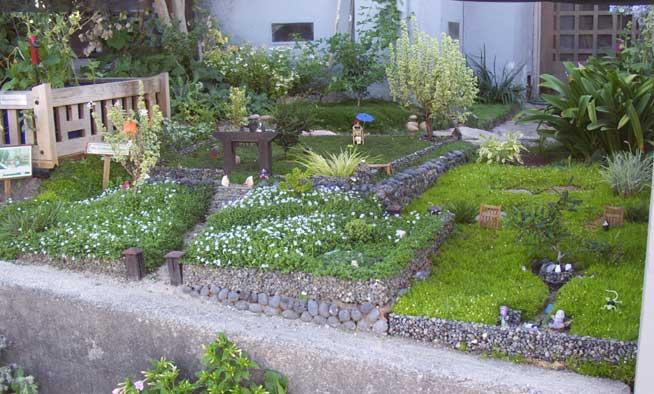 Prowell's Bonsai Miniature Garden