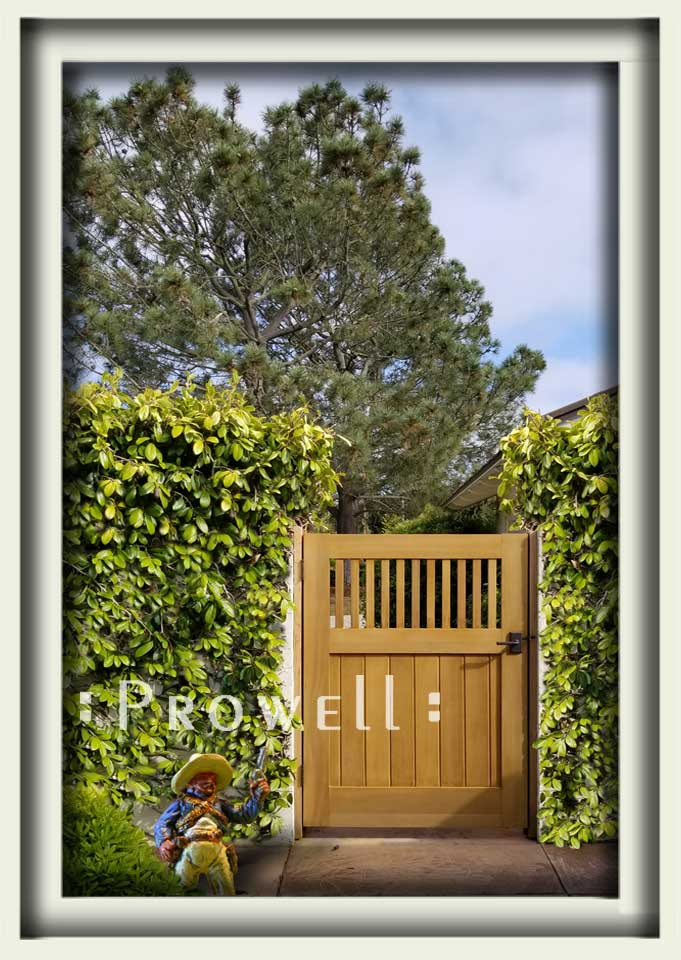 wood gate style #5-13 in San Diego. Prowell