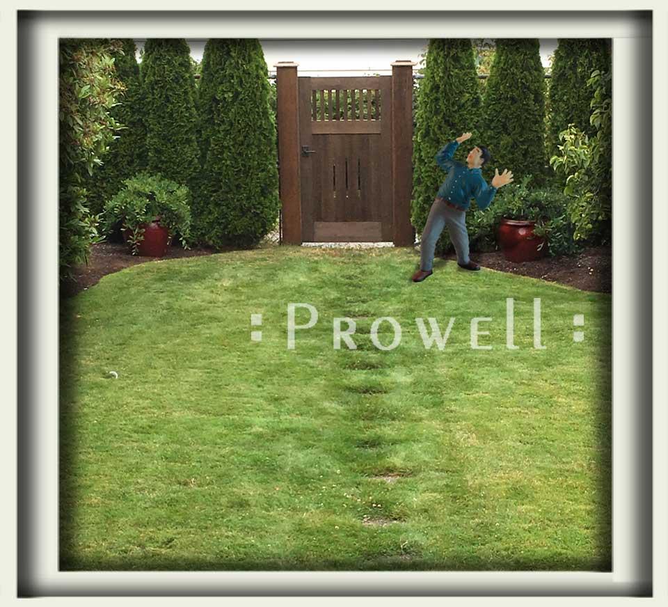 Custom Wood Garden Gate #5-14 in Seattle. Prowell