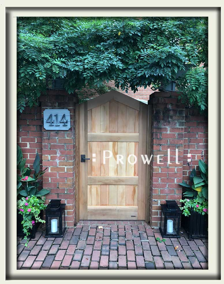 site photograph showing the wood privacy gate #82-3 in Washington DC. Prowell