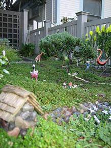 Contributor's Garden nn