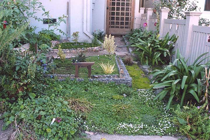 Contributor's Garden D
