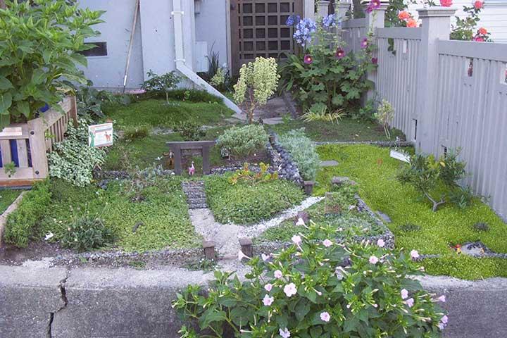 Contributor's Garden V
