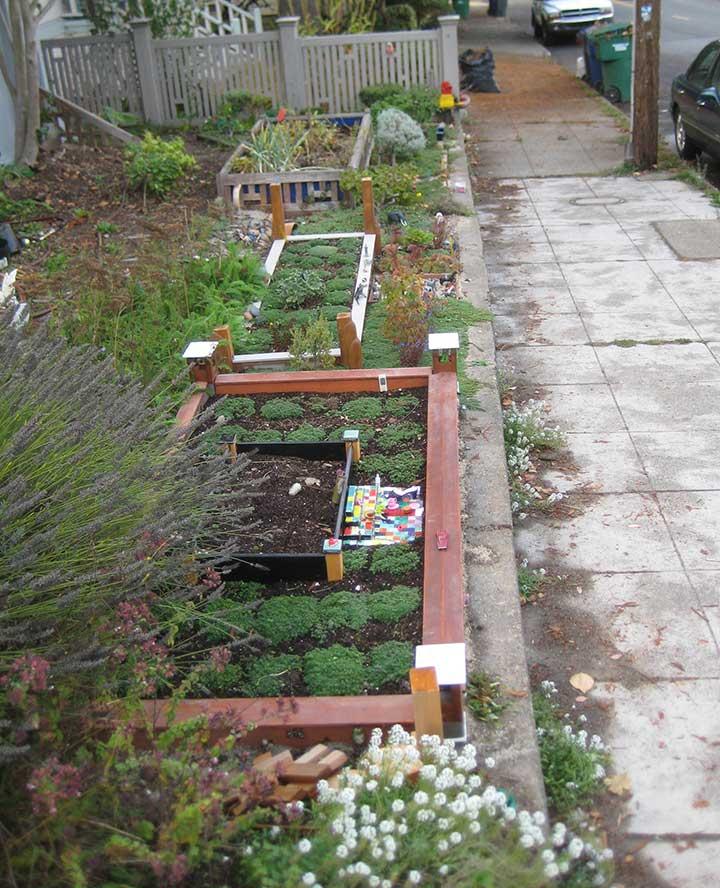Contributor's Garden ff