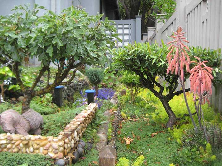 Contributor's Garden cc