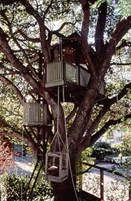 The PROWELL TREEHOUSE